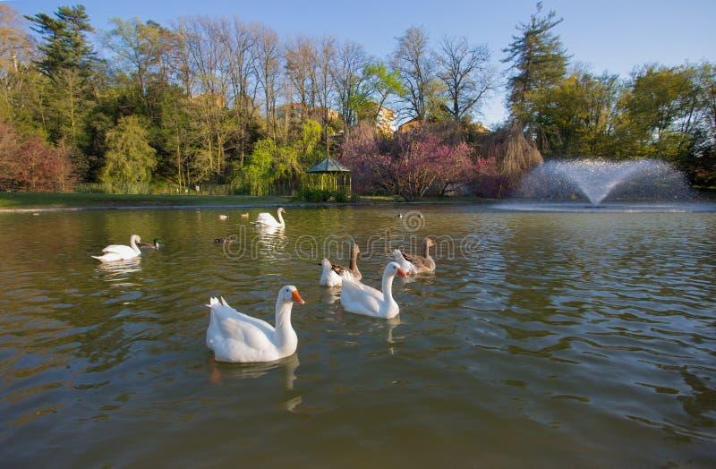 Villa Serra di Comago公园,热那亚赫诺瓦,意大利 免版税库存照片