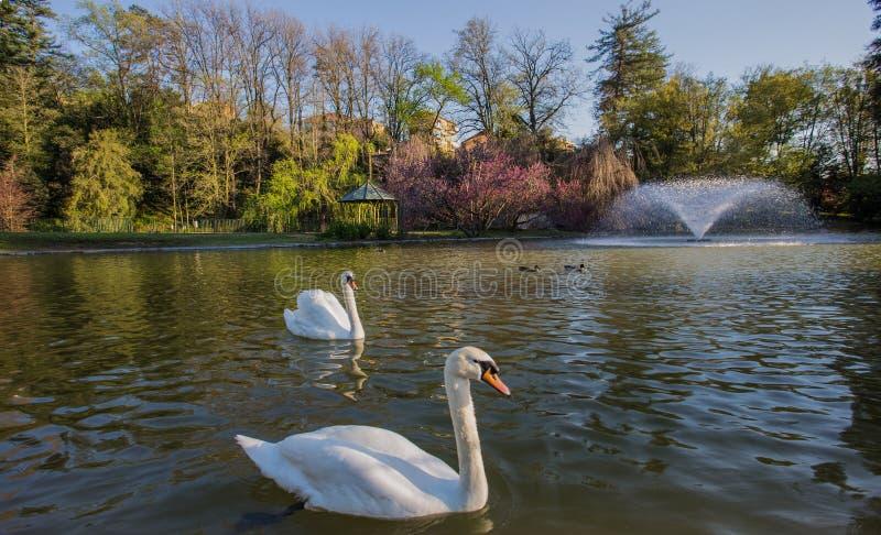 Villa Serra di Comago公园,热那亚赫诺瓦,意大利 免版税库存图片