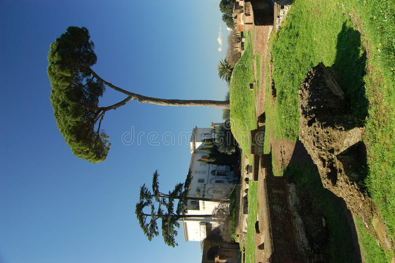 Download Villa & Tree On The Palatine Hill In Rome Royalty Free Stock Photos - Image: 19867178