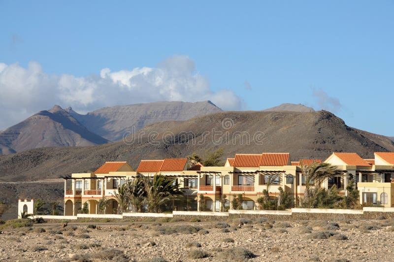 village épluché par La jaune canari d'île de fuerteventura photo stock