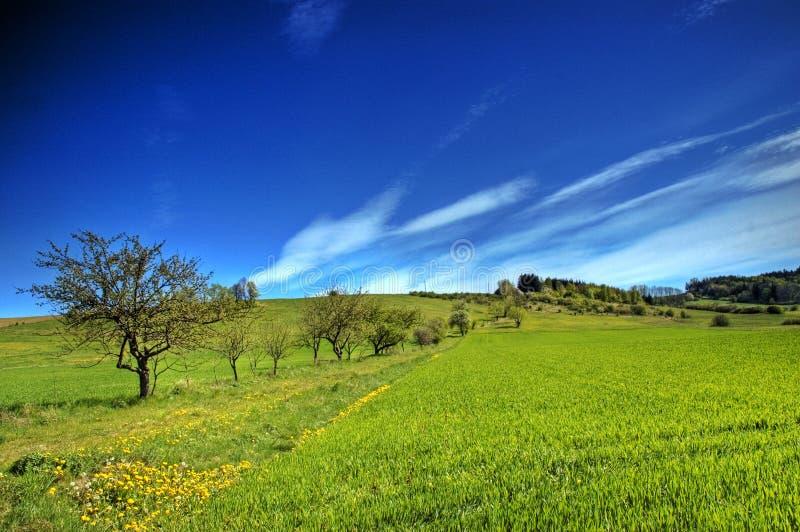 Download Village stock image. Image of garden, mountains, boarding - 2507309