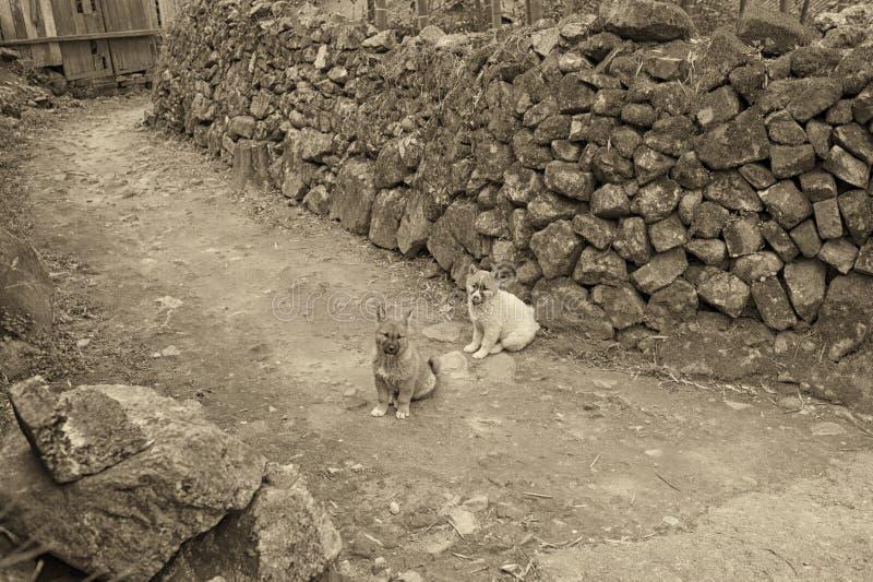 Village antique photographie stock libre de droits