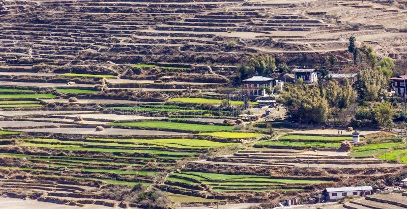 Village avec des terrasses de riz images stock