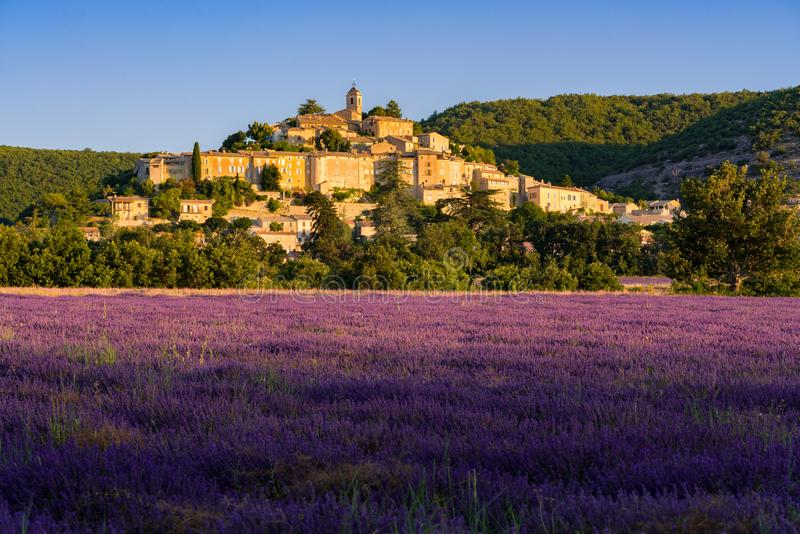 The village of Banon in Provence with lavender fields at sunrise in summer. Alpes-de-Hautes-Provence. Alps, France royalty free stock image