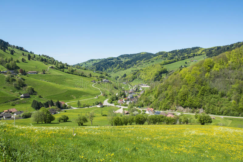Landscape Black Forest, Germany. Beautiful flowering meadows, hills with trees and small village stock photo