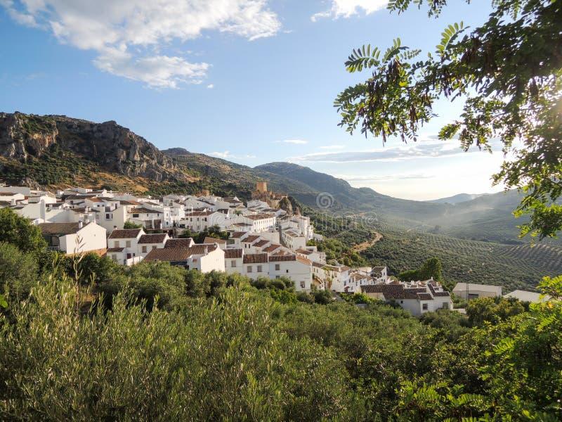 Village blanc sur une colline avec les vignobles olives photo libre de droits