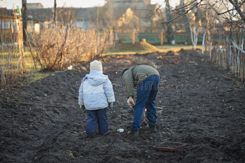 Village children dig a vegetable garden in the spring.  royalty free stock photography
