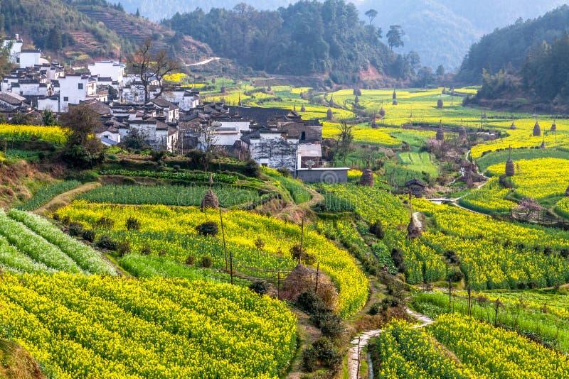 Village chinois typique dans les sud de la porcelaine photographie stock libre de droits