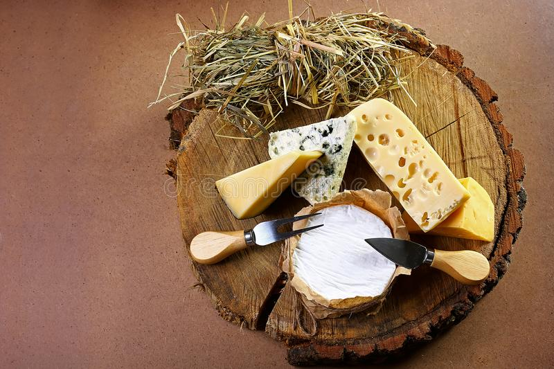 Village composition of cheese from hay to tree, cheese with blue mildew, Camembert or brie cheese circle, Cheese Serving Knife. to stock photo