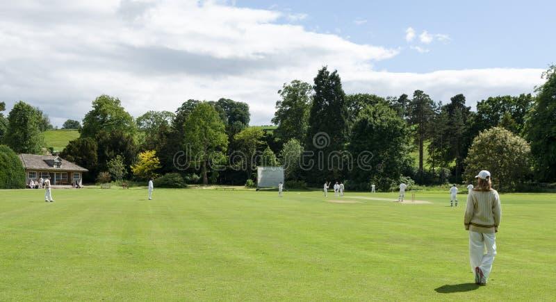Village Criicket - Cricket Game - North Yorkshire stock photos