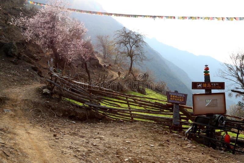 Village de montagne de neige, village de Qubeng, Yunnan, Chine photo libre de droits