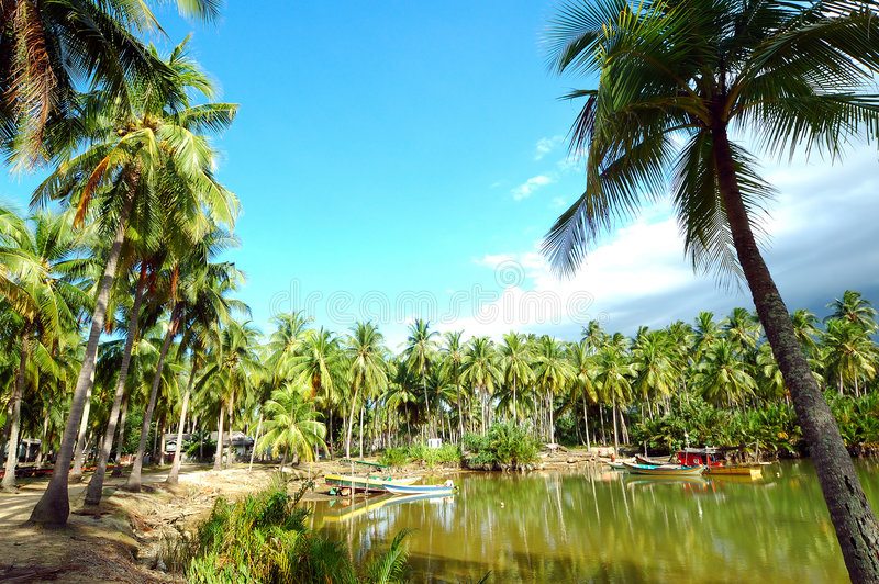 Village de pêche photos libres de droits