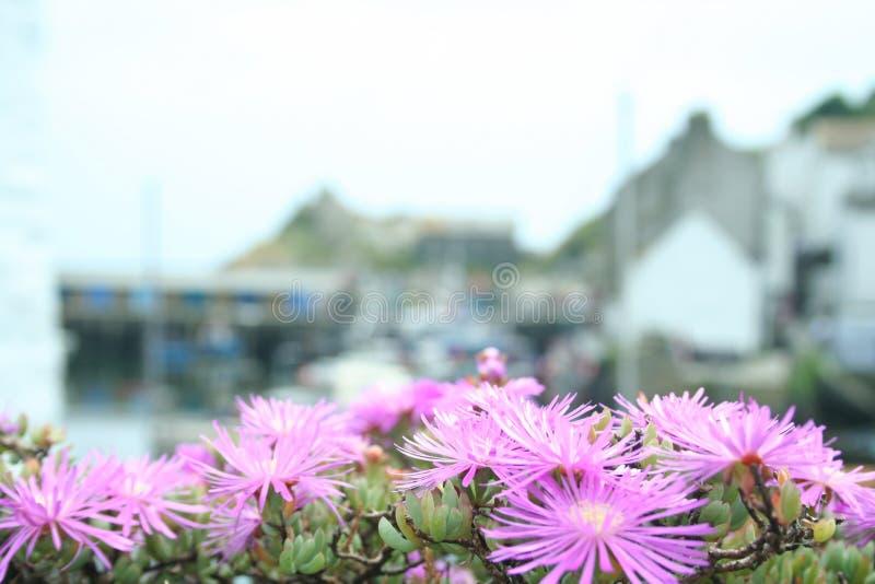 Village de pêche cornouaillais images stock