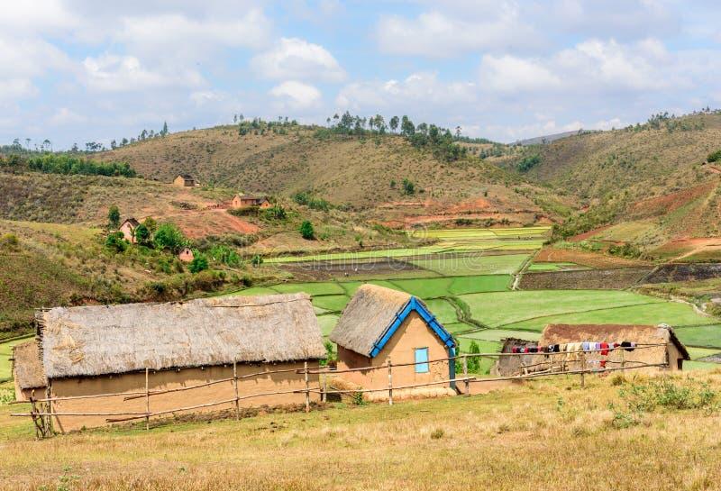 Village devant des gisements de riz, Madagascar photo libre de droits