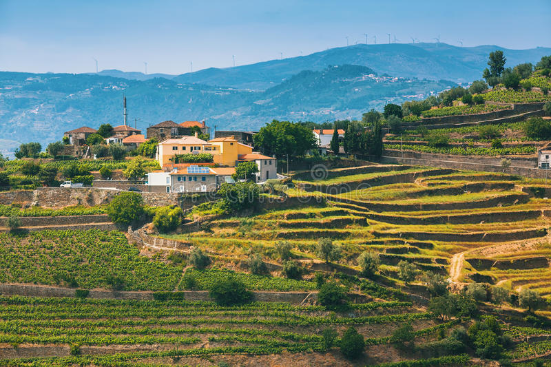 Village in Douro Valley, Portugal. View of vineyards are on a hills royalty free stock image