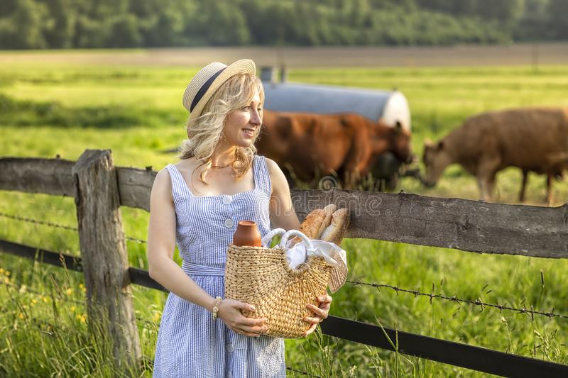 Village girl with a bag of milk and bread going through the fields with grazing cows. Summer rural life in Germany. royalty free stock photo