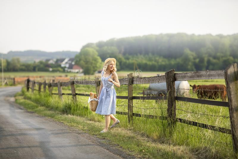 Village girl with a bag of milk and bread going through the fields with grazing cows. Summer rural life in Germany. royalty free stock images