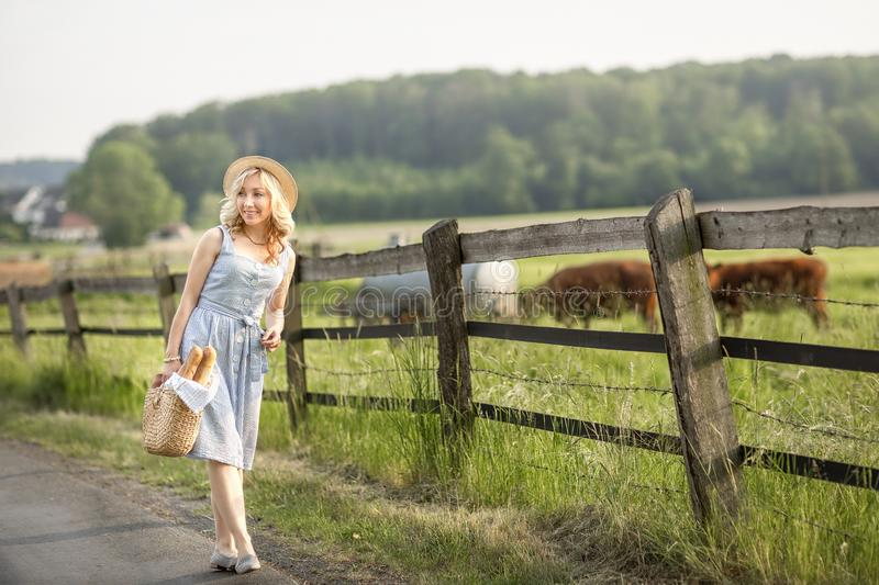 Village girl with a bag of milk and bread going through the fields with grazing cows. Summer rural life in Germany. stock photos