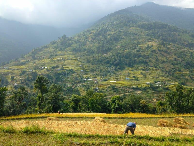 Village in Himalayas Mountains Annapurna trek stock photo