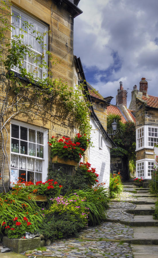 Download Village Homes stock photo. Image of robin, buildings - 10893068