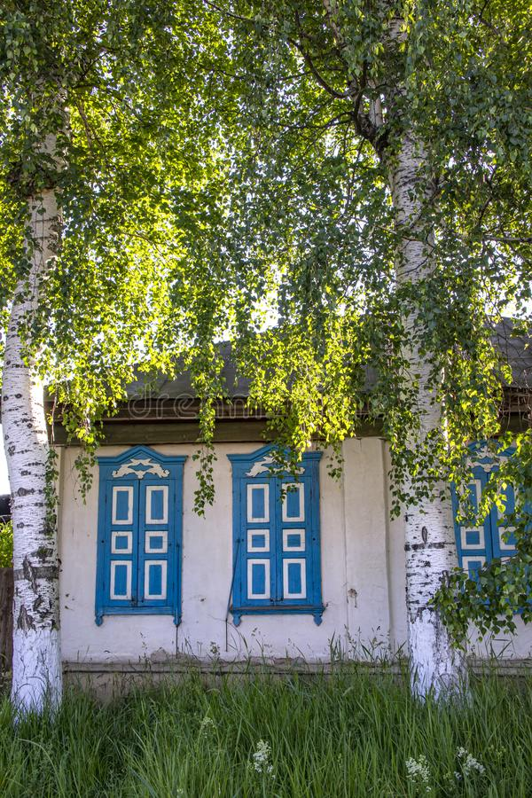 Village house with closed blue shuttered windows between large birch trees royalty free stock photography