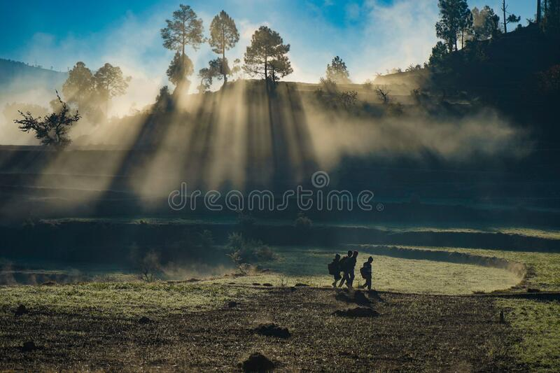 Village landscape captured during sunrise, village kids going to school. Sun rays peeps through the fog and the trees in the land royalty free stock photo