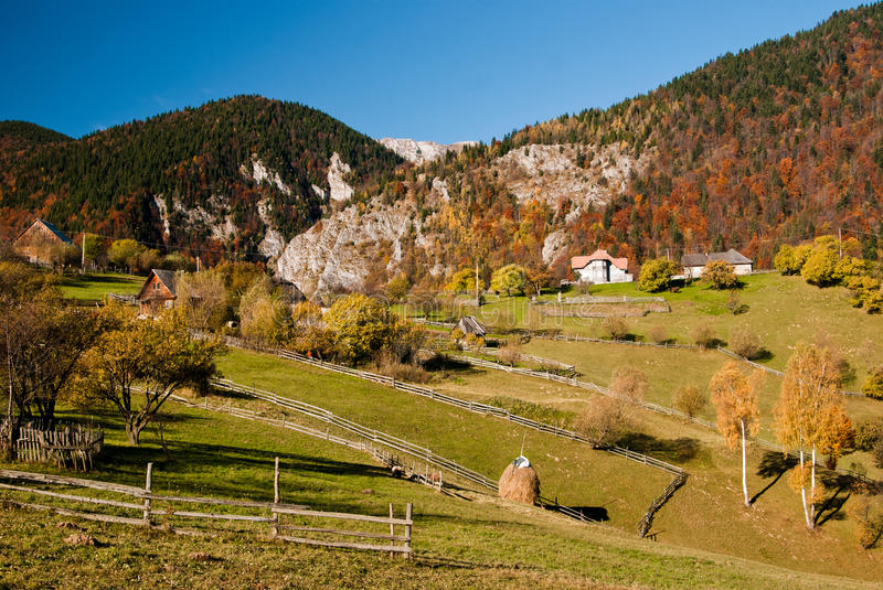 Village landscape in Romania. Autumn landscape in Magura village (Romania) with a cow eating grass royalty free stock photo