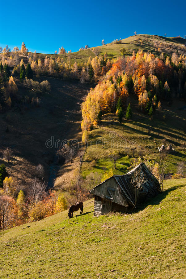 Download Village Landscape In Romania Stock Image - Image: 16694139