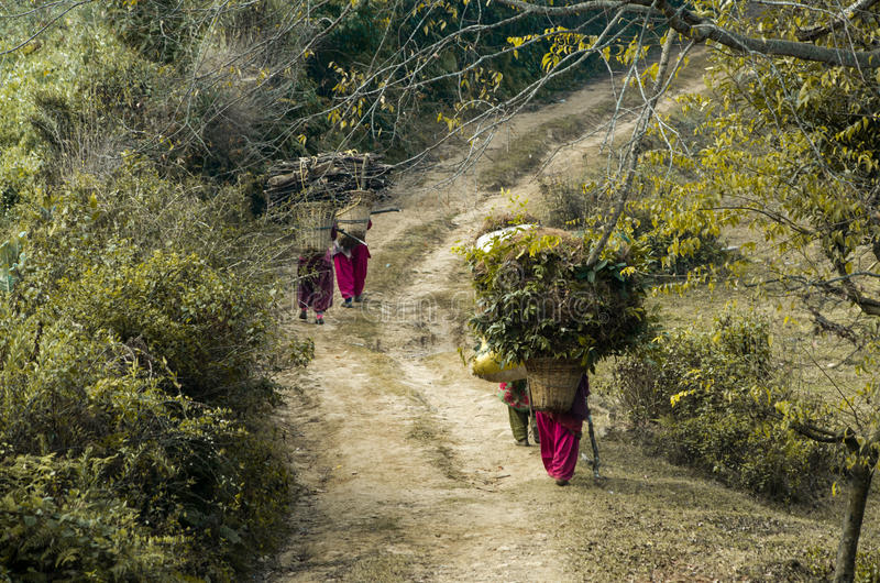 Village life in Nepal. Women returning home after collecting needed resources royalty free stock photo
