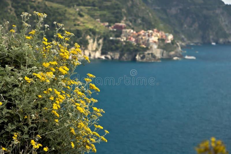 The village of Manarola seen from Corniglia stock images