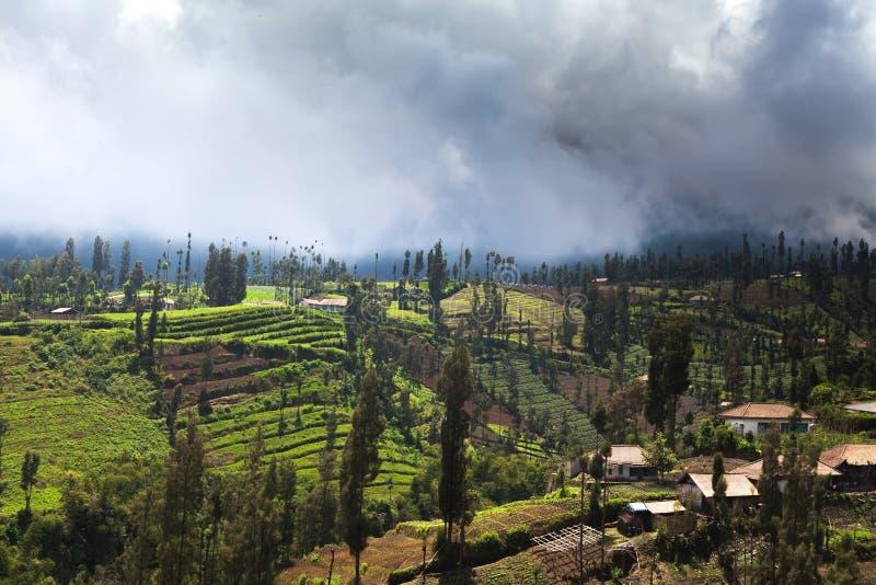 Village in Mount Bromo volcanoes taken in Tengger Caldera, East. Java, Indonesia royalty free stock photography