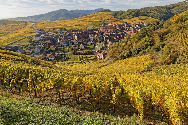 The village of Niedermorschwihr in its vineyards landscape. Near Colmar in Alsace, France stock image
