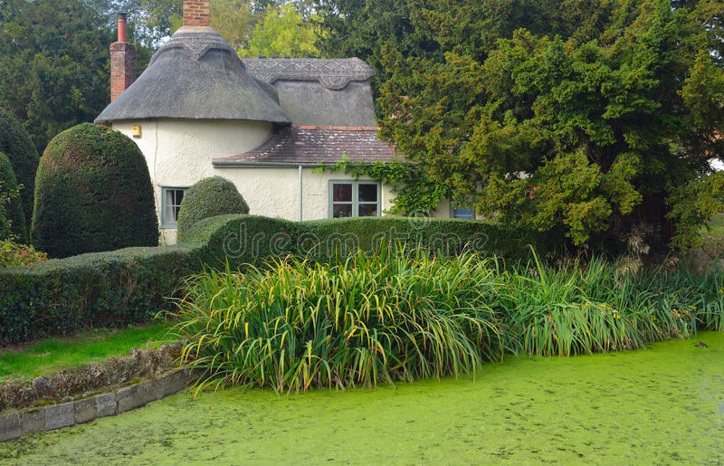Village pond and thatched cottage Northill Bedfordshire. royalty free stock image