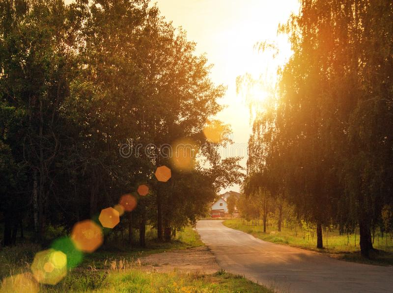 Village road to old house. Autumn landscape with sun light, green trees and road. Fall sunset landscape royalty free stock images