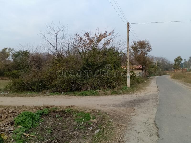 Village side road show calmness. And show the scene of  natural beaty and calmness of village site royalty free stock photos