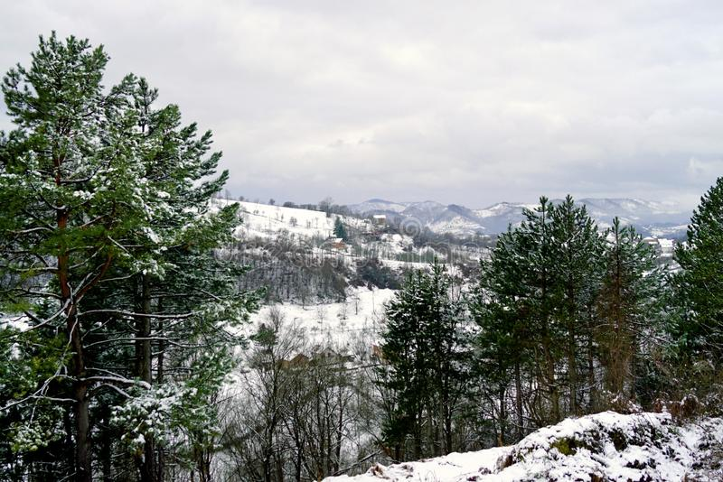 The village is surrounded by forest in the highlands in winter. stock photos