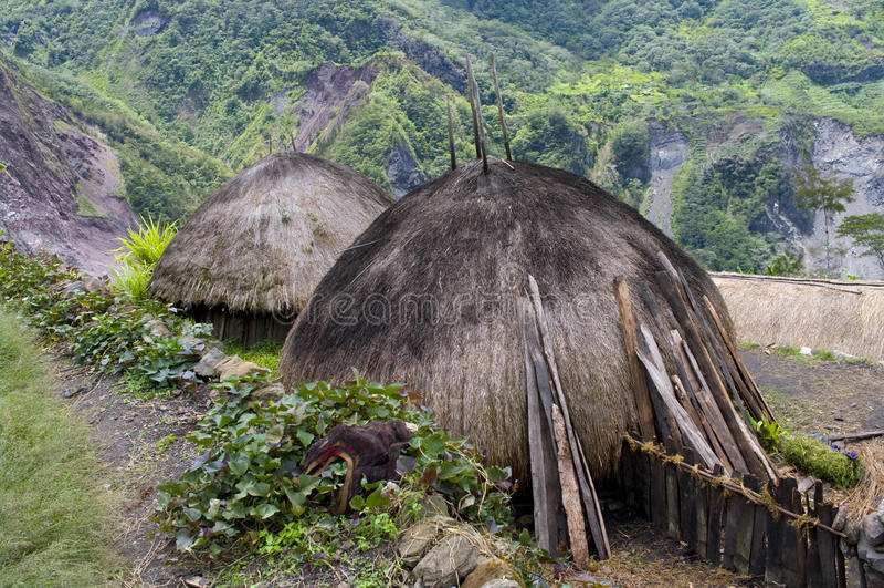 Village traditionnel en Papouasie, Indonésie. image libre de droits