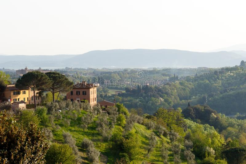 Tuscan villa with olive grove in the foreground. Village in the Tuscan countryside as seen from Siena, Italy, located in Tuscany with olive trees in the royalty free stock images