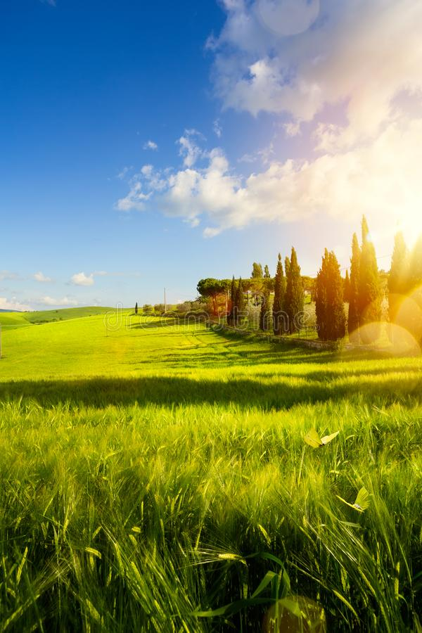 village in tuscany; Italy countryside landscape with Tuscany rolling hills ; sunset over the farm land royalty free stock photo
