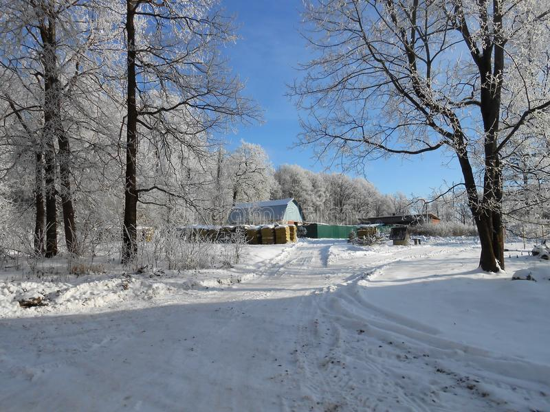 Village winter landscape, clear day. stock image