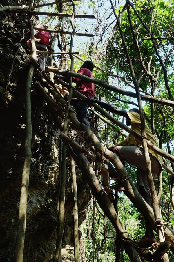 villageois escaladant une grande falaise de pierre de roche sur une échelle expédient de tronc de bambou et d'arbre images stock