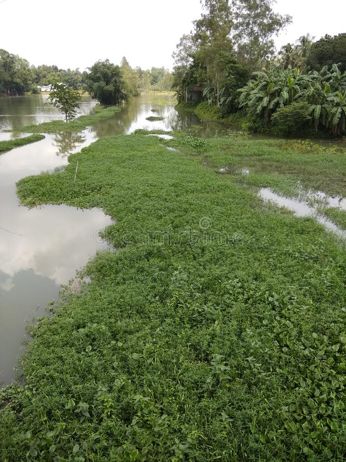 Villaggio Bangladesh immagine stock