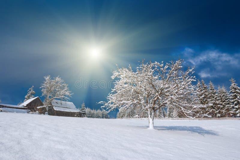 Villaggio carpatico di Snowy fotografia stock libera da diritti