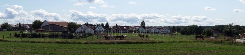 Villaggio con i cavalli immagini stock libere da diritti
