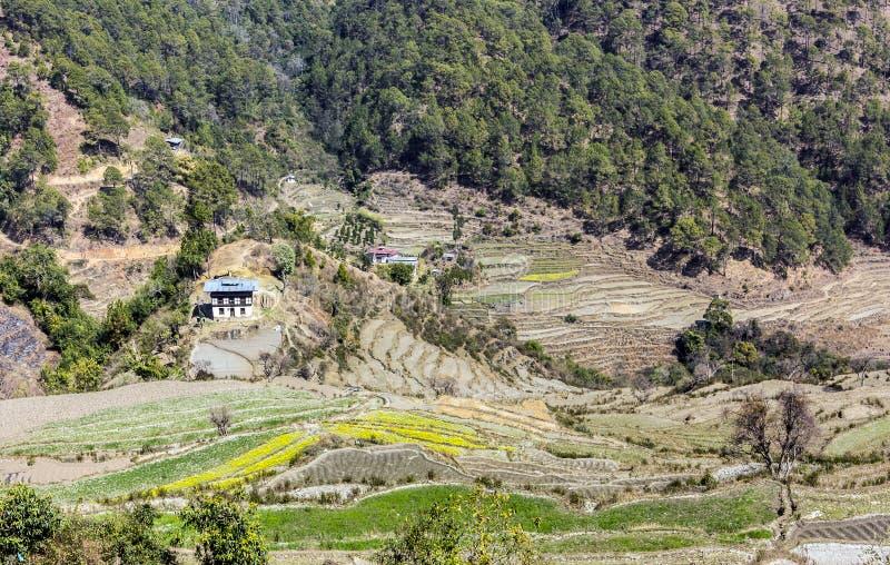 Villaggio con i terrazzi del riso fotografie stock