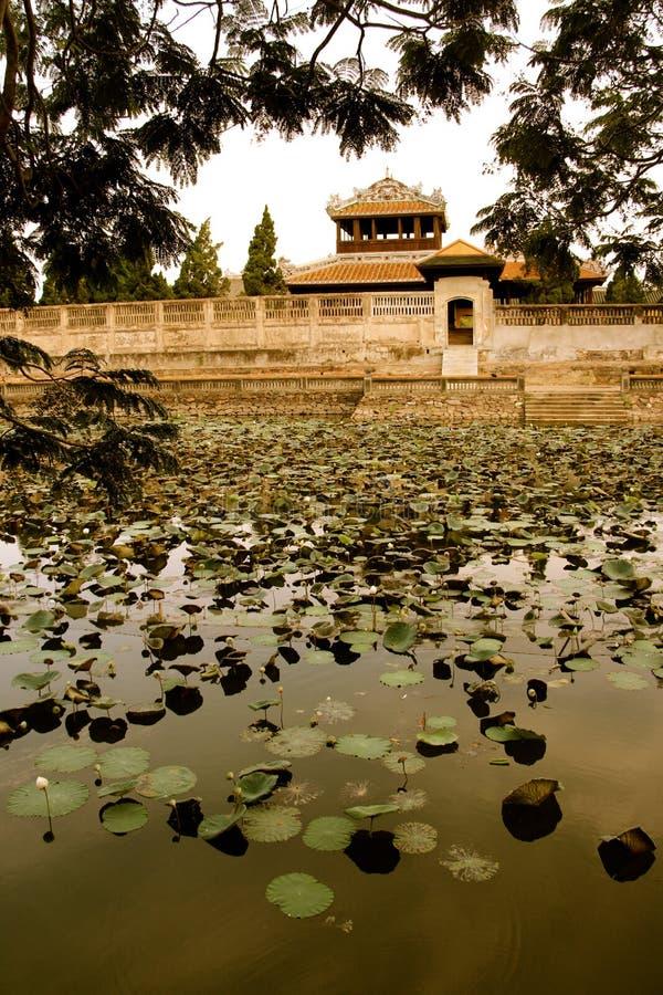 Villaggio degli imperatori, tonalità, stagno del cuscinetto di Lilly fotografia stock
