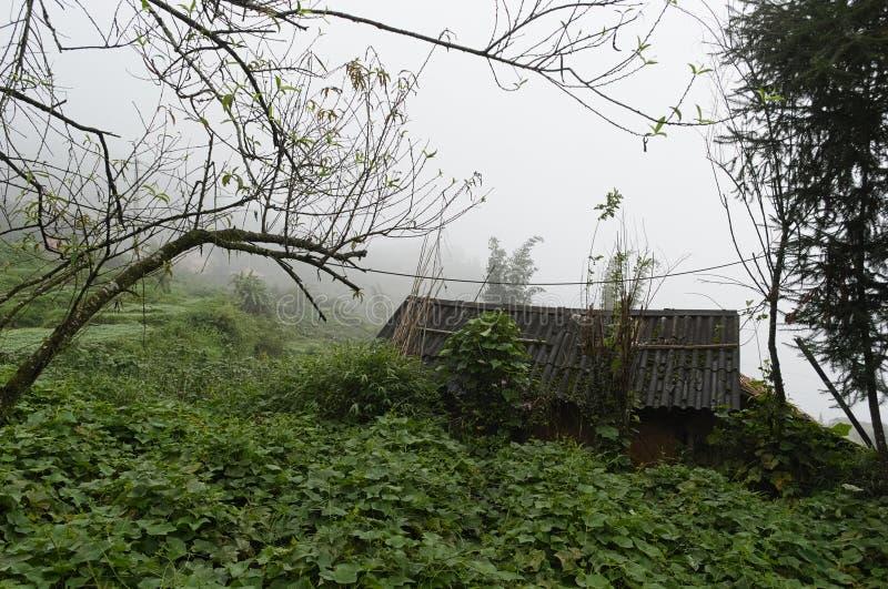 Villaggio della campagna con i vecchi campi dell'azienda agricola e della casa immagine stock libera da diritti