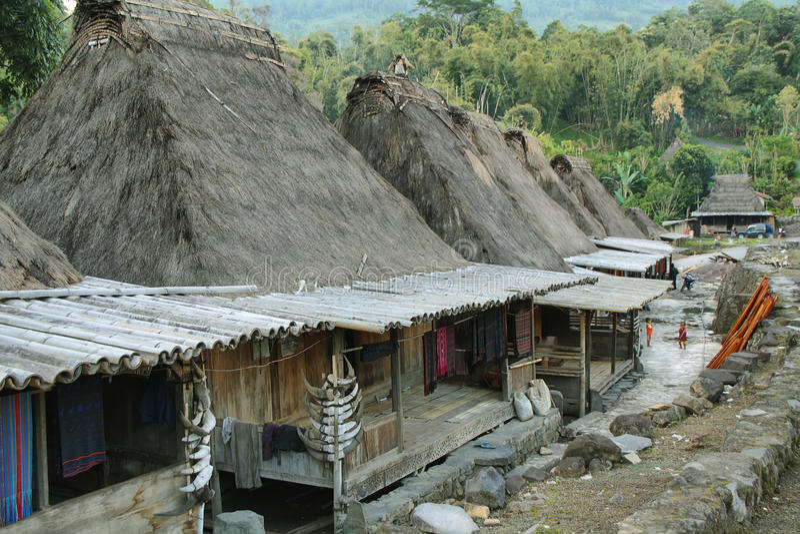 Villaggio di Bena, isola del Flores immagine stock
