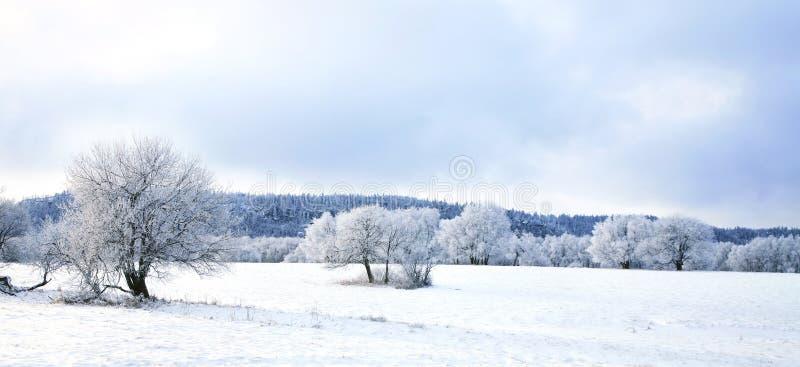 Villaggio di Pasterka in inverno del â della neve in Polonia immagini stock libere da diritti