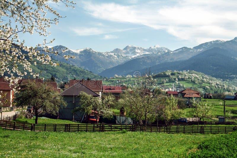 Villaggio di Plav, nel Montenegro, al confine albanese, in mezzo alle catene di montagna di Balcani fotografie stock libere da diritti